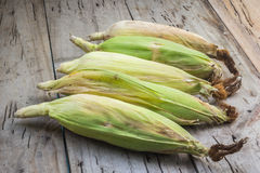 Raw corn Stock Photos
