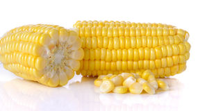 Raw corn  on the white background.  Royalty Free Stock Photography