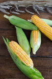 Raw corn on wood table. With wheat Stock Photography