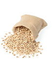 Raw cowpea beans in the sack Royalty Free Stock Photo