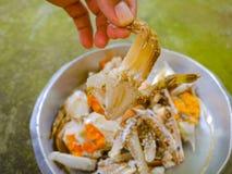 Raw crab stock photos