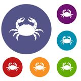 Raw crab icons set. In flat circle red, blue and green color for web Royalty Free Stock Photography