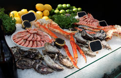 Raw crab legs, shrimps and oysters. On ice in seafood restaurant Stock Image