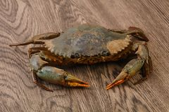 Raw crab. Over the wooden background ready for cooking Royalty Free Stock Photo