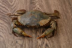 Raw crab. Over the wooden background ready for cooking Royalty Free Stock Photography