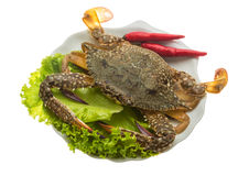 Raw crab. Ready for cooking Stock Photos