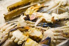 Raw crab in a restaraunt. Photo of raw crab in a restaraunt royalty free stock photo