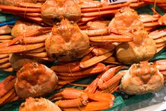 Raw crabs selling in seafood market. Beautiful sightseeing landscape Royalty Free Stock Images