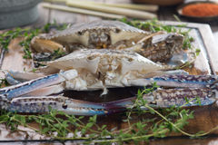 Raw crabs with spices. For cooking preparation Royalty Free Stock Image