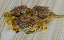 Raw crabs. On the wooden background Stock Images