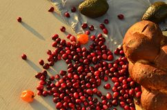 Raw cranberries in food still life Royalty Free Stock Photos