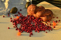 Raw cranberries in food still life Stock Images