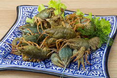 Raw Crayfish Royalty Free Stock Photo