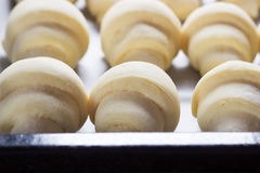 Raw croissants prepared for baking Stock Images