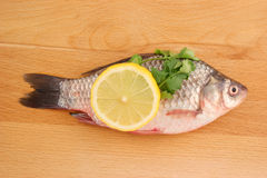 Raw crucian with lemon and parsley Royalty Free Stock Photography