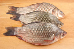 Raw crucian on wooden background Royalty Free Stock Photo