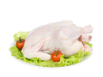 Raw crude fresh chicken on a plate Stock Images