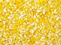 Raw crushed corn groats Royalty Free Stock Images