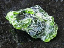 Raw crystal of Chrome Diopside gemstone on dark. Macro shooting of natural mineral rock specimen - raw crystal of Chrome Diopside gemstone on dark granite Stock Photography