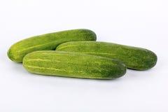 Raw cucumber on  Stock Photo