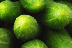 Raw cucumbers Royalty Free Stock Image
