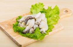 Raw cuttlefish Royalty Free Stock Image