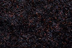 Raw dark red, balck purple rice, texture. Riceberry pattern background. Food ingredient background. Top view, healthy. Lifestyle concept Stock Photo