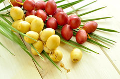 Raw dated with leaves. A bunch of yellow and red raw dates with palm leaf Stock Photo