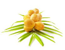 Raw dates. A bunch of yellow raw dates with palm leaf on white background Stock Photography
