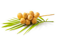 Raw dates. A bunch of yellow raw dates with palm leaf on white background Royalty Free Stock Image