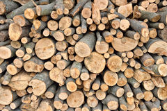 Raw debarked wood logs in a lumber staging and storage yard. Raw timber stacked Royalty Free Stock Photos