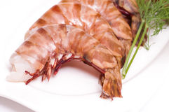 Raw deepwater prawns Stock Photography