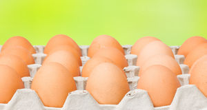 Raw diet eggs Stock Image