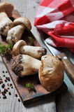 Raw dirty cep Stock Images