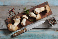 Raw dirty cep Royalty Free Stock Photos