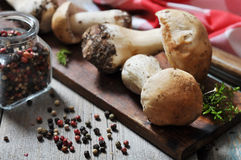 Raw dirty cep. On wooden cutting board with pepper and knife Royalty Free Stock Images