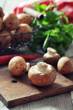 Raw dirty champignon Royalty Free Stock Images