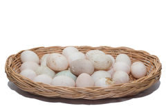 Raw dirty duck eggs Stock Image
