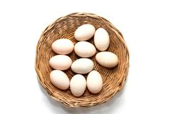 Raw dirty duck eggs in basket. On white background Royalty Free Stock Image