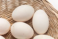 Raw dirty duck eggs in basket. On white background Stock Photography
