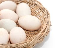Raw dirty duck eggs in basket. On white background Stock Photo