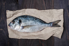 Raw dorada on the crumpled seet of paper. On the old wooden table Royalty Free Stock Image