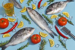 Raw dorada fish with spices, salt, lemon and herbs, rosemary on a ligth-blue background. Top view stock image