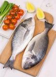 Raw dorado on a cutting board. Fresh dorado fish on a cutting board Royalty Free Stock Image