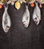 Raw dorado fish hanging on fishing net on black stone background Stock Images