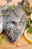 Raw dorado fish with hebs and lemon Stock Photo