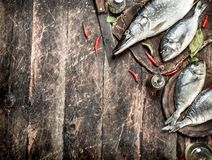 Raw Dorado fish with hot chili peppers. On a wooden background Royalty Free Stock Image