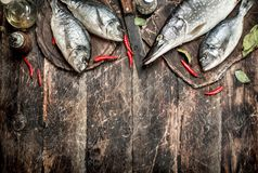 Raw Dorado fish with hot chili peppers. On a wooden background Royalty Free Stock Images