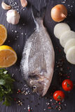 Raw dorado fish with ingredients close-up. vertical top view Stock Photography