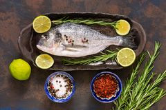 Raw dorado fish with ingredients for cooking. View from above. The concept of a healthy diet. Royalty Free Stock Image
